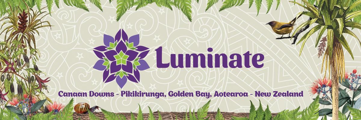 Luminate website banner image