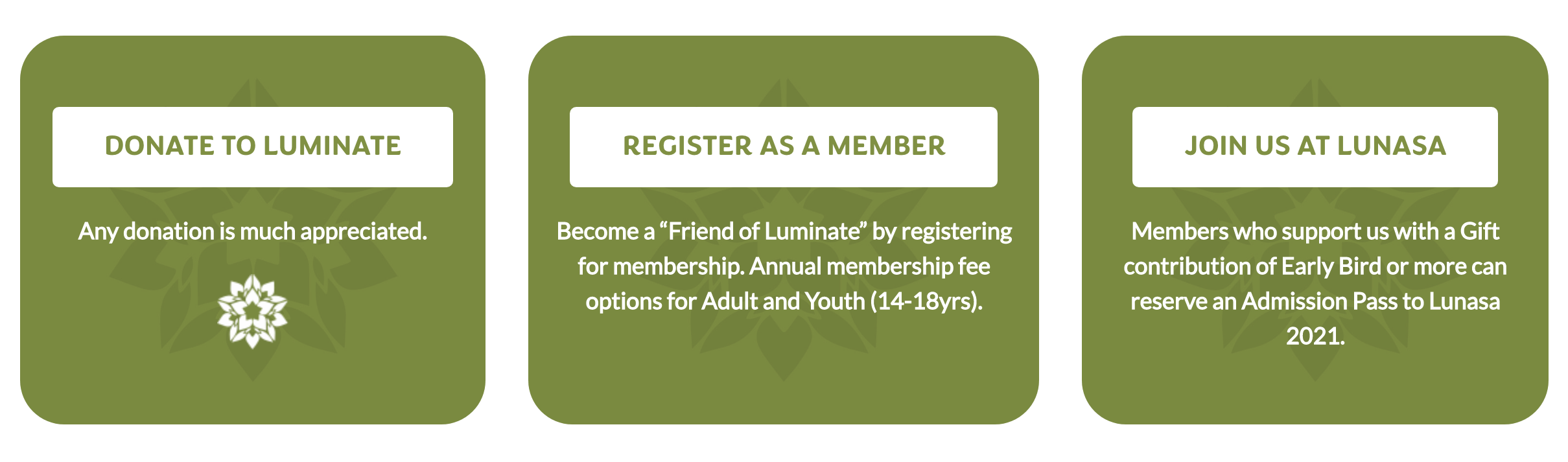 How to Support Luminate options